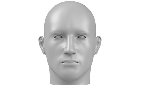3d rendering of a human face